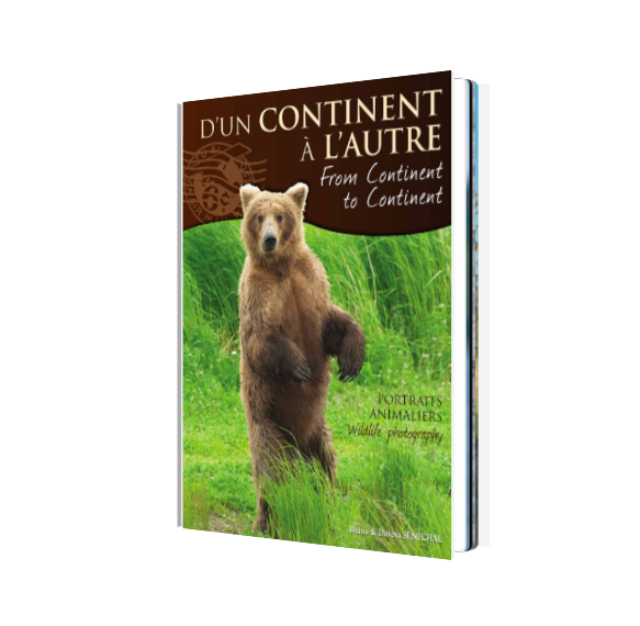 Book - From continent to continent