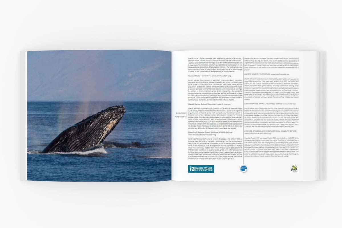 Great product overview: sample/book/book3/double-page/double-page-4.jpg